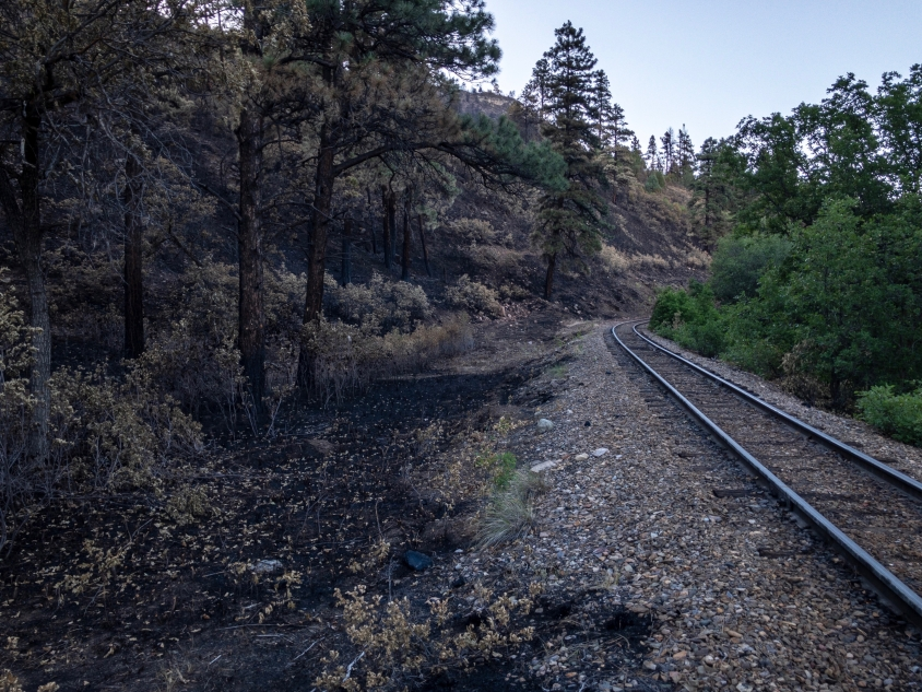 This is where the 416 fire in Durango, Colorado was started.